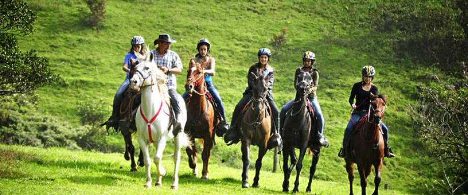 Short horseback tour