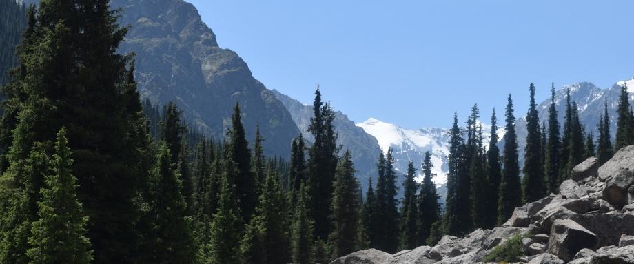 Chon Kyzyl-Suu Gorge