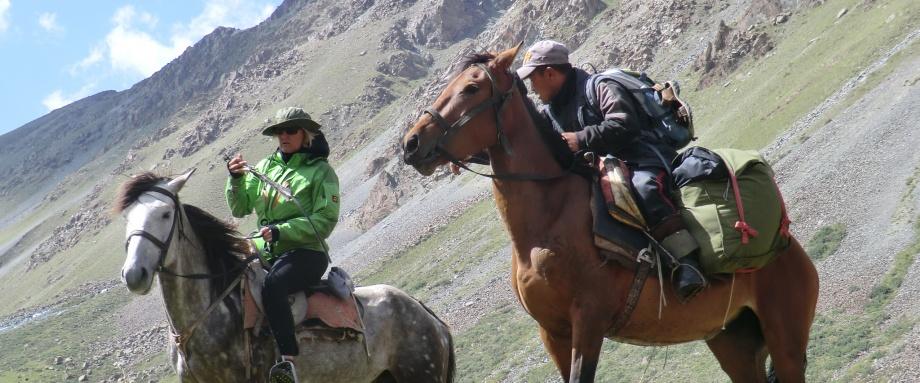 Acquaintance with Kyrgyz Horse